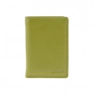 Carta e portafoglio in pelle piatta